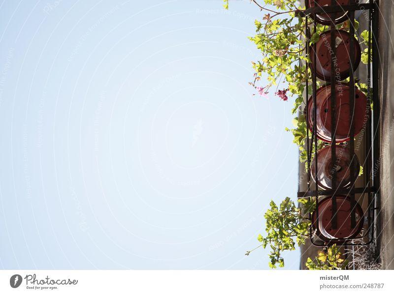 Blumentöpfe. Himmel Sommer Haus Fenster Wand oben Garten Mauer Gebäude hoch Hochhaus ästhetisch Küche Bauwerk Italien