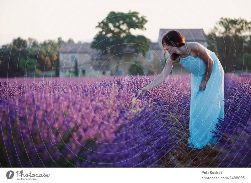 #A# lila Morgentau Frau Mensch Ferien & Urlaub & Reisen Mädchen feminin ästhetisch Abenteuer violett Kleid Frankreich zart Fernweh Tau Lavendel pflücken