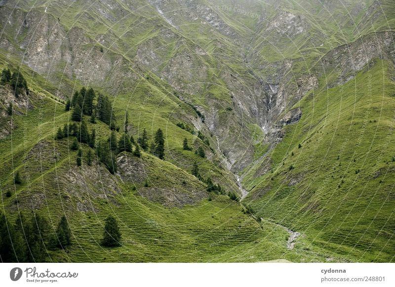Der Berg ruft Natur Ferien & Urlaub & Reisen Baum Erholung Einsamkeit Landschaft ruhig Ferne Berge u. Gebirge Umwelt Leben Wiese Wege & Pfade Zeit Freiheit Stein