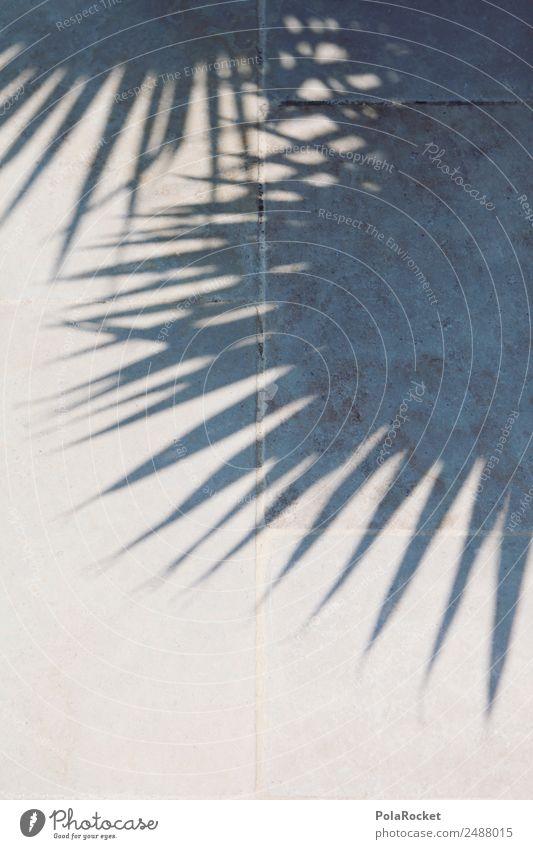 #A# Schattenwesen Klima Schönes Wetter ästhetisch Palme Palmenwedel Palmendach paradiesisch Ferien & Urlaub & Reisen Urlaubsfoto Urlaubsstimmung Urlaubsort