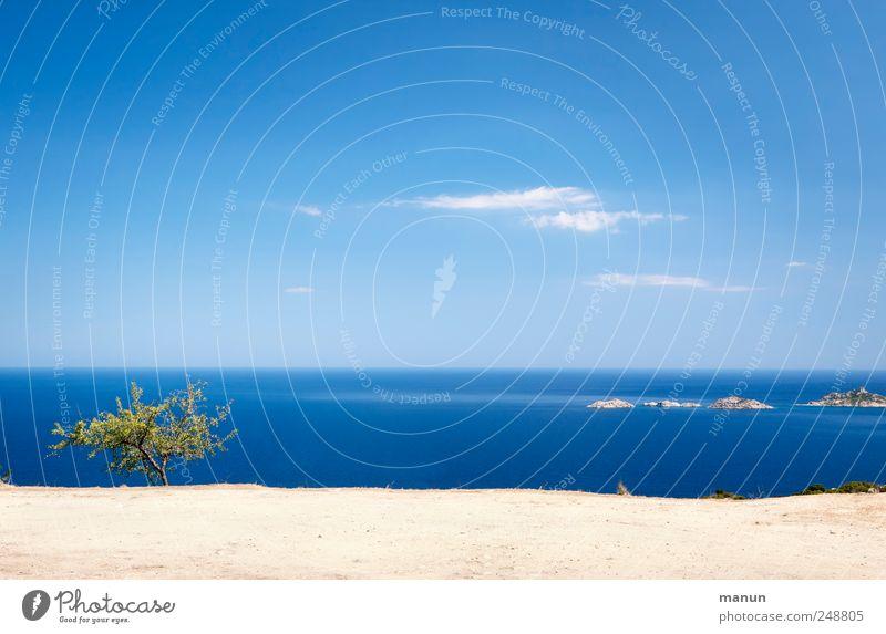 Fernsicht Himmel Natur Wasser blau Baum Ferien & Urlaub & Reisen Meer Landschaft Sand Küste Erde Felsen natürlich Sträucher authentisch Fernweh