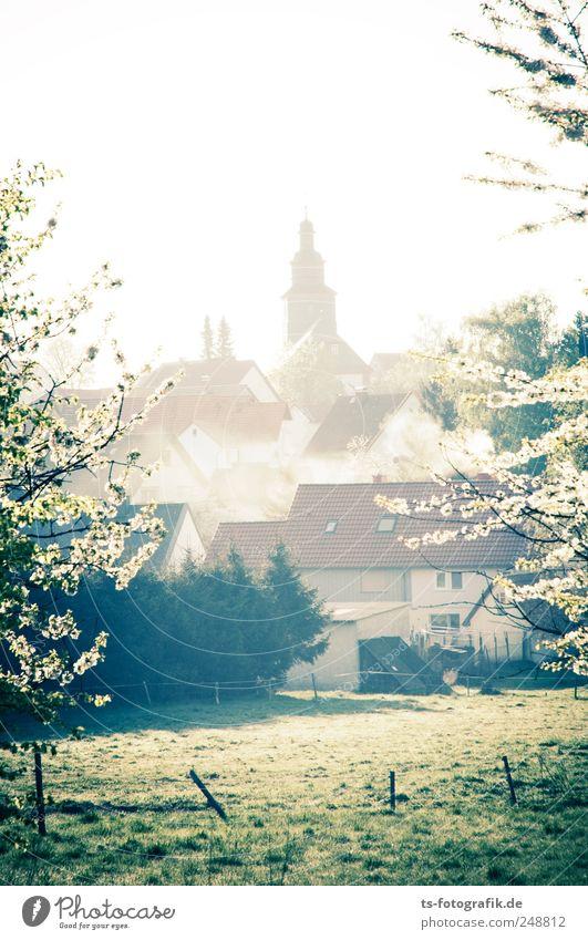 Die Kirche im Dorf gelassen Natur grün Baum Pflanze Haus Wiese Landschaft Umwelt Blüte Frühling Nebel Kirche Dorf Rauch Schönes Wetter Schornstein