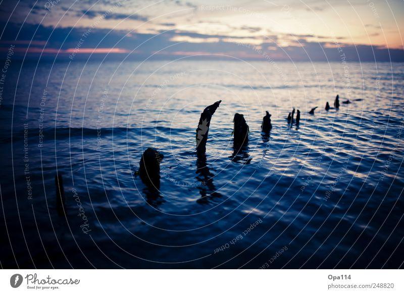 Buhnenreste Natur Wasser blau Sommer Meer Wolken Ferne Umwelt Landschaft Küste Luft Wetter Wellen Horizont gold Insel