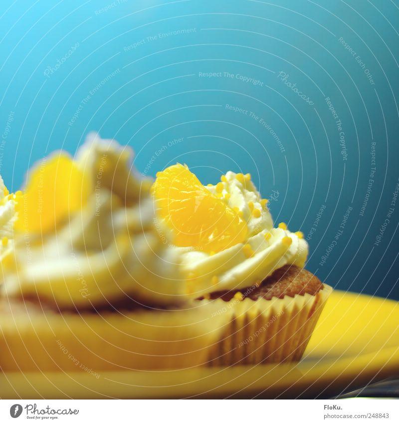 Törtchen Lebensmittel Orange Kuchen Dessert Süßwaren Ernährung frisch lecker süß blau gelb Muffin Mandarine Sahne Kalorienreich Farbfoto Nahaufnahme