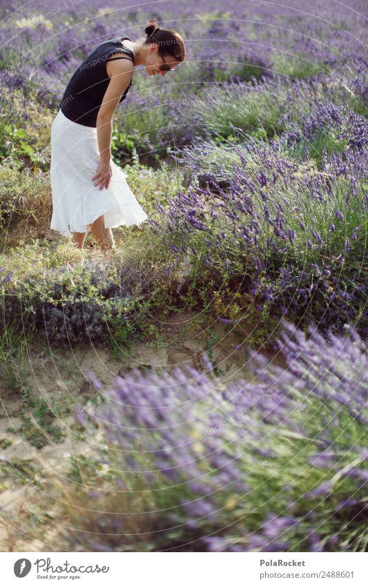 #A# Im Lavendel Frau Natur Sommer Pflanze Landschaft Umwelt Feld ästhetisch Idylle laufen Spaziergang Sommerurlaub violett Frankreich Urlaubsfoto
