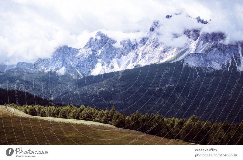 Dolomiten Ferien & Urlaub & Reisen Tourismus Abenteuer Sommer Berge u. Gebirge wandern Natur Landschaft ästhetisch groß schön einzigartig natürlich wild