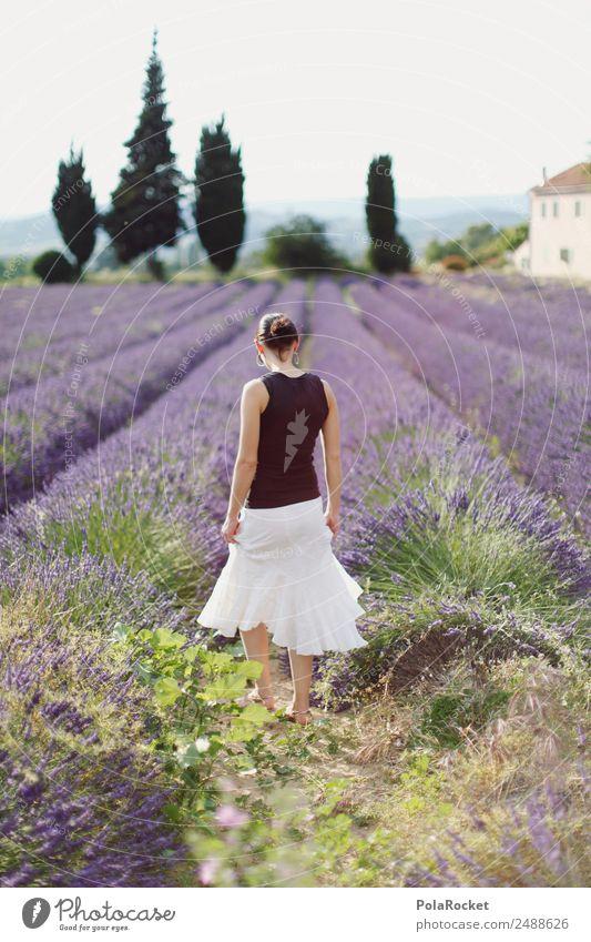 #A# Ausflug in die Provence Frau Natur Sommer Pflanze Landschaft Umwelt Tourismus ästhetisch Idylle Blühend Spaziergang Sommerurlaub violett Kleid Frankreich