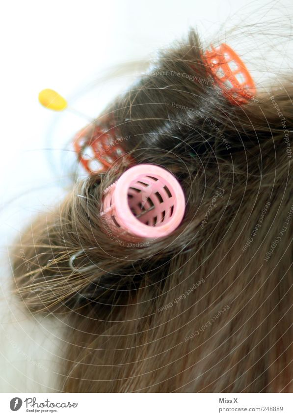 von der Rolle schön Haare & Frisuren Accessoire brünett Locken Lockenwickler rosa piecken Farbfoto mehrfarbig Nahaufnahme Hintergrund neutral