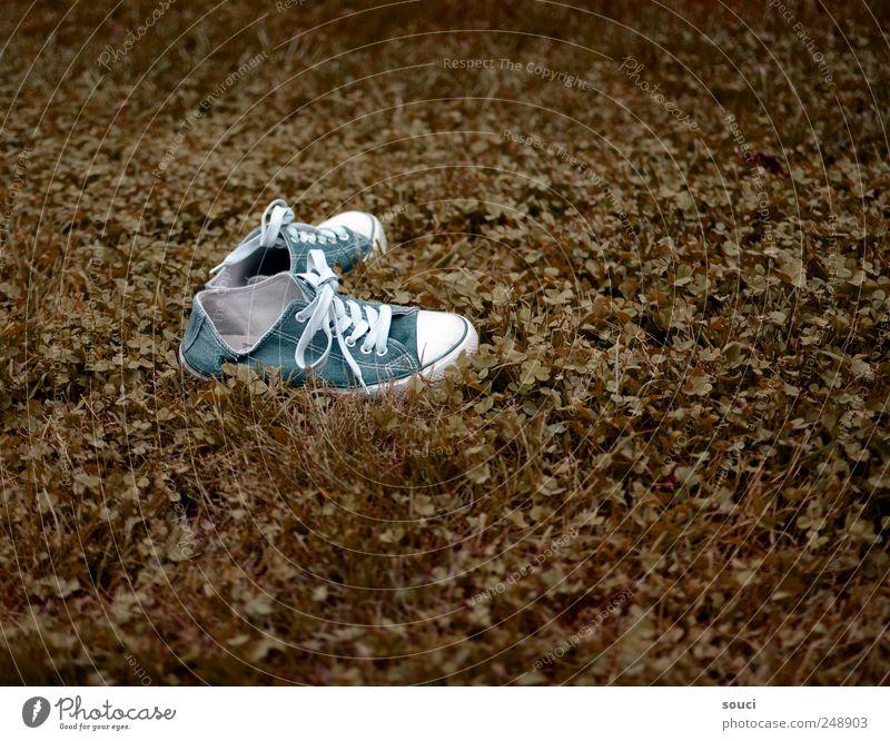 Ausflug Freizeit & Hobby Ferien & Urlaub & Reisen Freiheit Sommer Garten Natur Pflanze Erde Herbst Gras Wiese Stoff Schuhe Turnschuh laufen blau braun grün weiß