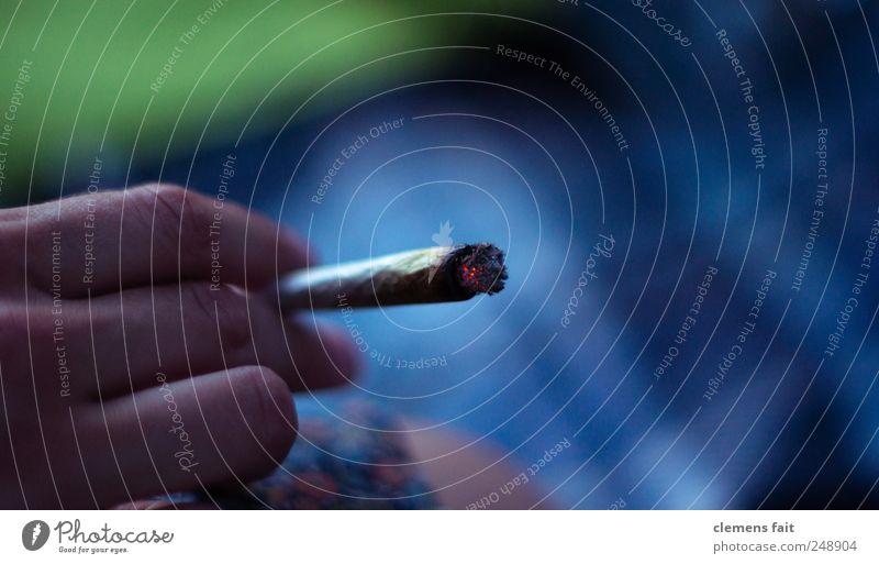 Want some? Rauchen Rauschmittel Erholung Sommer Hand Joint Glut Zigarette Wiese Farbfoto Außenaufnahme Dämmerung Schwache Tiefenschärfe