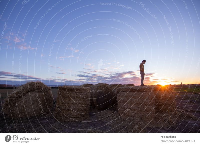 Mann schaut zum Horizont. Ferien & Urlaub & Reisen Sommer Meer Berge u. Gebirge Mensch Erwachsene Körper 30-45 Jahre Natur Landschaft Himmel Alpen Brücke Jacke