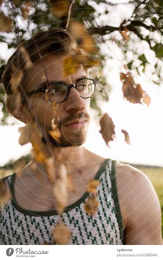 Herbstzeit Mensch Natur Jugendliche schön Baum Blatt ruhig Gesicht Erwachsene Ferne Erholung Umwelt Leben Freiheit Stil