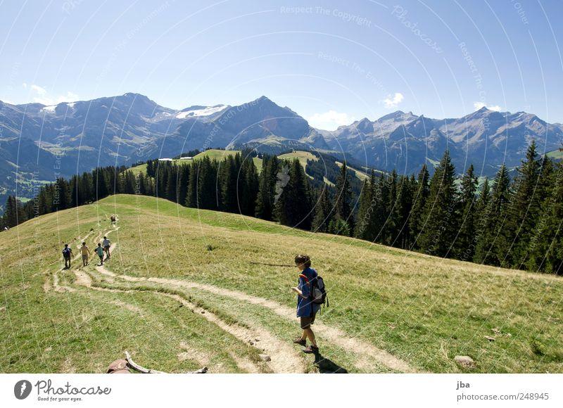 wandern in den Bergen Mensch Himmel Natur Sommer Wald Erholung Wiese Landschaft Berge u. Gebirge Freiheit Wege & Pfade Menschengruppe Freundschaft Freizeit & Hobby wandern Tourismus