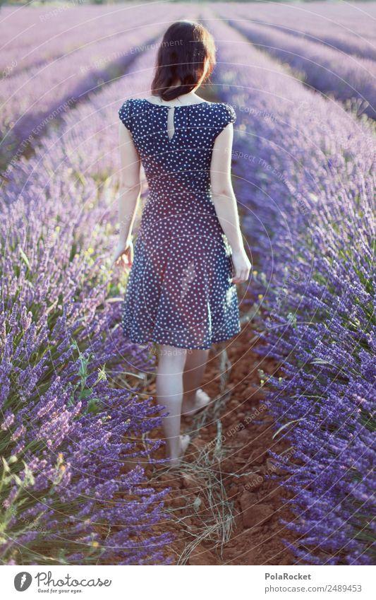#A# Lavendel Spaziergang Frau Erholung Kunst Feld elegant ästhetisch Idylle laufen Blühend einzigartig violett Kleid Frieden Frankreich zart
