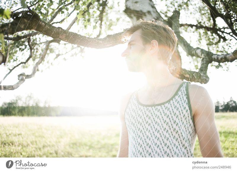 Abendsonne tanken Mensch Natur Jugendliche schön Baum Sommer ruhig Erwachsene Erholung Umwelt Landschaft Leben Wiese Freiheit Stil träumen