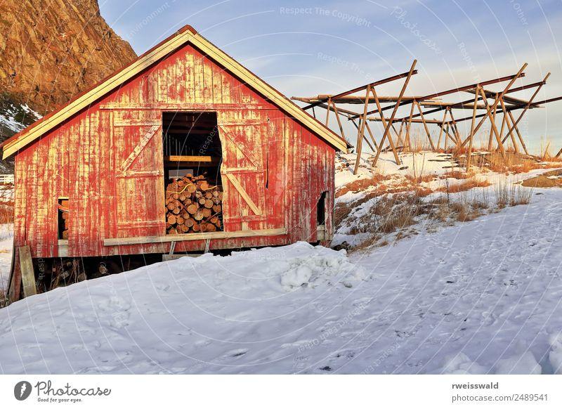 Alter Rorbu ruiniert und Hackschnitzel-Logspeicher. A i Lofoten-Norwegen-332 Fisch Meeresfrüchte Angeln Ferien & Urlaub & Reisen Tourismus Sonne Insel Winter