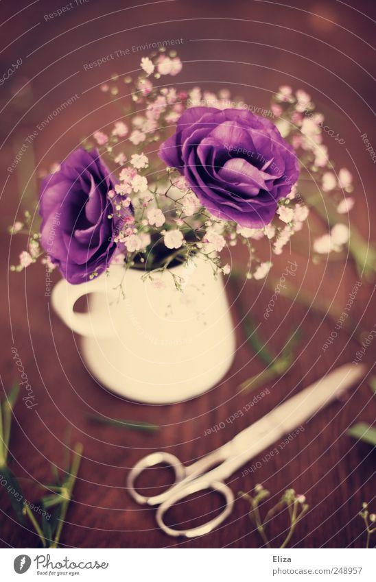 Purple. Dekoration & Verzierung Blume Blüte schön Tisch Holz Floristik Schere Vase geschnitten Schleierkraut altehrwürdig Stimmung verschönern Kitsch