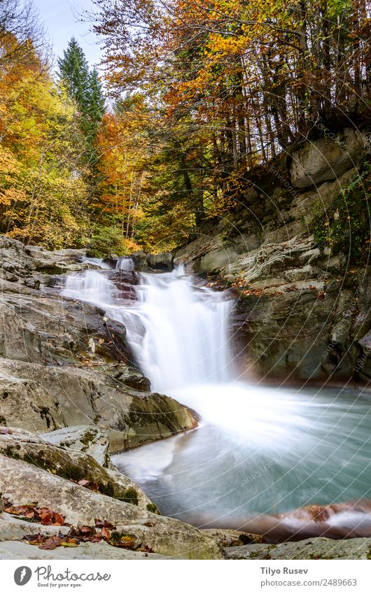 Wasserfall des Würfels, Selva de Irati, Navarra schön Ferien & Urlaub & Reisen Berge u. Gebirge Tapete Umwelt Natur Landschaft Pflanze Herbst Baum Blatt Park