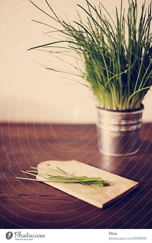 [300] - Is mir doch Lachs, äh.. Lauch... Schnittlauch! grün Garten Gesundheit Küche Kochen & Garen & Backen Kräuter & Gewürze lecker Holzbrett Bioprodukte saftig Vegetarische Ernährung Schnittlauch Kräutergarten