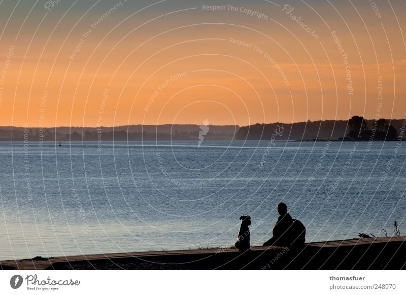 Abend am Meer Frau Mensch Himmel Wasser blau Sommer Strand Ferien & Urlaub & Reisen Meer schwarz Ferne Tier Hund träumen Stimmung Erwachsene