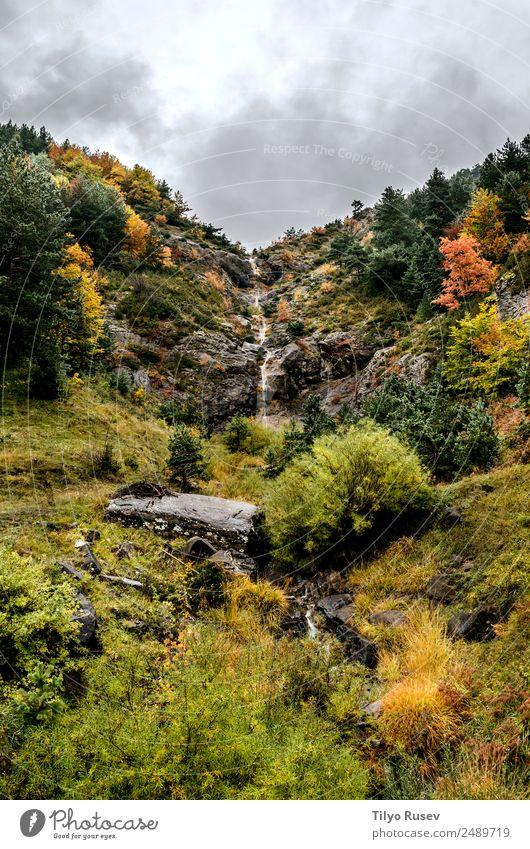 Himmel Natur Ferien & Urlaub & Reisen blau Pflanze schön Farbe grün Landschaft weiß Baum rot Wolken Blatt Wald Berge u. Gebirge