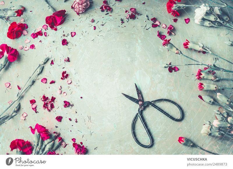 Garten Blumen Rahmen und Schere Stil Design Freizeit & Hobby Sommer Feste & Feiern Natur Pflanze Blatt Blüte Dekoration & Verzierung Blumenstrauß Liebe rosa