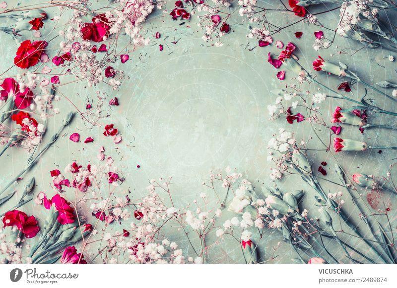 Nelke Blumen Rahmen Hintergrund Stil Design Sommer Feste & Feiern Natur Pflanze Blüte Dekoration & Verzierung Blumenstrauß Ornament trendy rosa Hintergrundbild