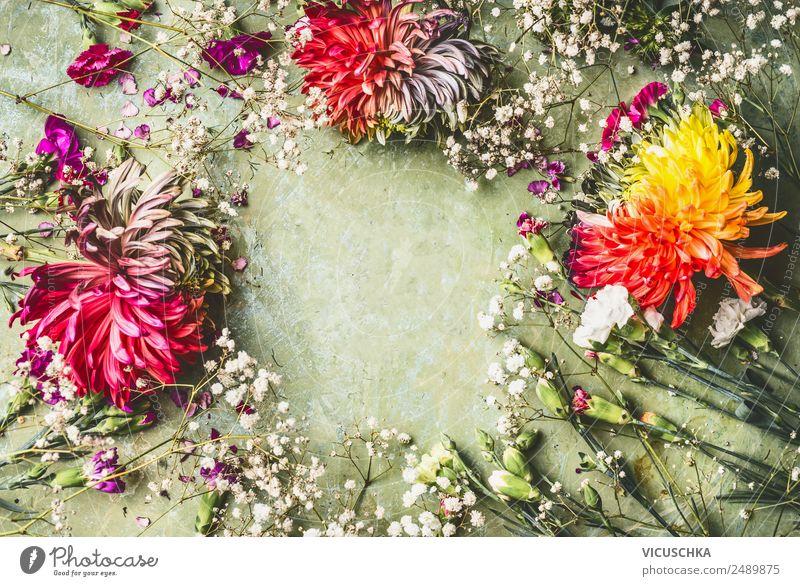 Sommerblumen Rahmen auf grün Lifestyle Stil Design Freizeit & Hobby Häusliches Leben Garten Feste & Feiern Natur Pflanze Blume Rose Blatt Blüte