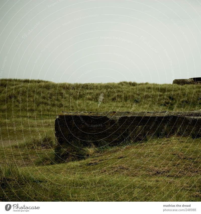 DÄNEMARK - XXXVIII Himmel Natur alt Wolken dunkel Wand Landschaft Umwelt Gras Mauer Horizont Beton Fassade trist Schutz historisch