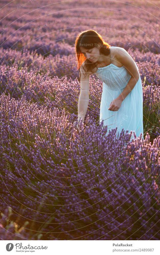 #A# Blumenmädchen Frau Natur Pflanze Landschaft Mädchen Umwelt Feld ästhetisch Blühend violett Kleid Frankreich zart Lavendel dezent Provence