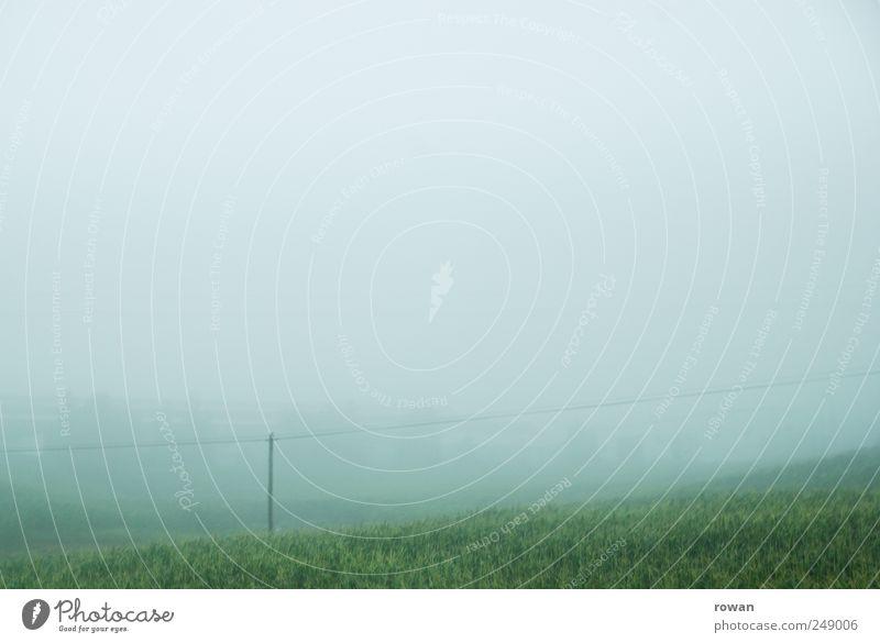 neblig Natur Landschaft Pflanze Wasser Himmel Wolken Herbst schlechtes Wetter Wiese Hügel Berge u. Gebirge nass trist grün Traurigkeit Einsamkeit Umwelt Gras