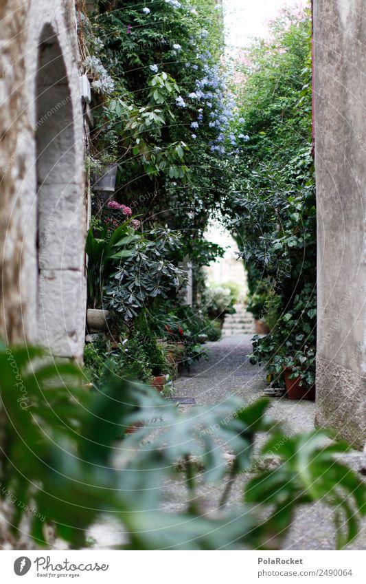 #A# GSSE Kunst Kunstwerk ästhetisch Gasse mediterran Straße bewachsen Hinterhof Idylle Frankreich Provence Kleinstadt Romantik verstecken Altstadt verträumt