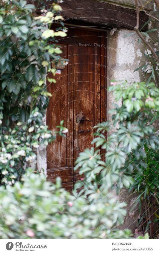 #A# Türwuchs Kunst Zufriedenheit Eingangstür Garten Französisch verstecken Schatz mystisch Frankreich Provence Holztür Farbfoto mehrfarbig Außenaufnahme