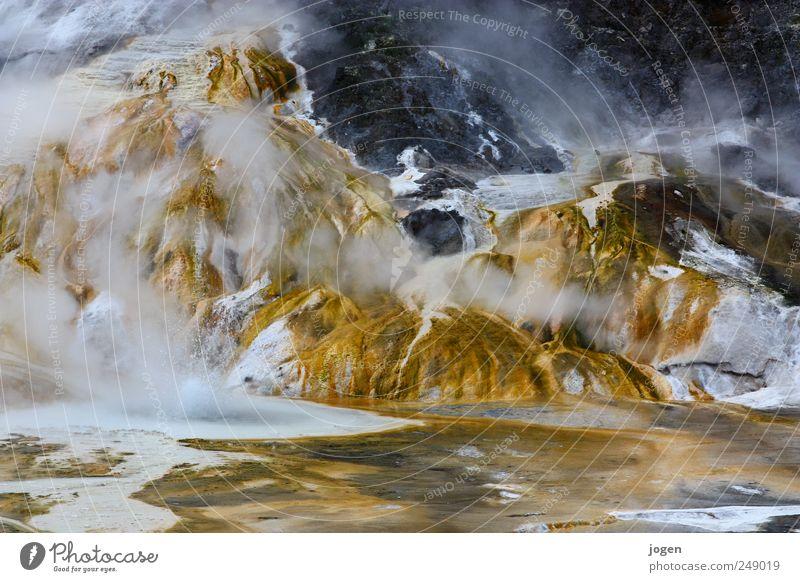 Hotspot Natur Wasser weiß gelb Leben Landschaft braun gold Feuer gefährlich bedrohlich Urelemente heiß fantastisch exotisch Neuseeland