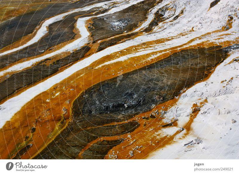 Hitzestrom Umwelt Natur Landschaft Urelemente Feuer Wasser Quelle Fluss strömen fließen Grad Celsius Fließsystem Bakterien elegant exotisch fantastisch