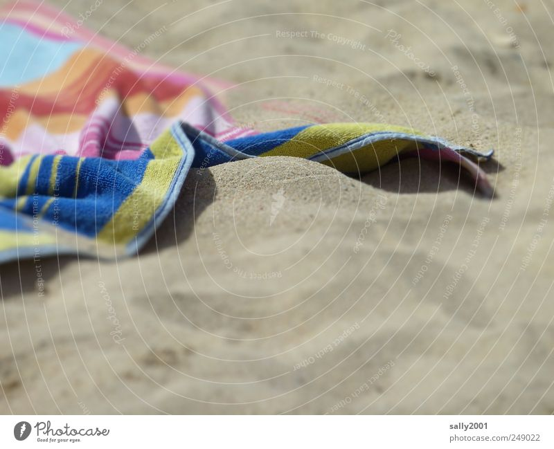 SandStrandBadeUrlaub Sommer Ferien & Urlaub & Reisen Meer Erholung Glück Freizeit & Hobby liegen Schwimmen & Baden Tourismus weich Schönes Wetter Sonnenbad