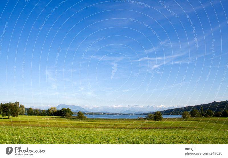 Feld, See, Alpen Natur grün blau Sommer Ferne Wiese Freiheit Landschaft natürlich Schweiz Seeufer Schönes Wetter Wolkenloser Himmel