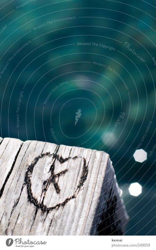 X was here, and in love Ferien & Urlaub & Reisen Sommer Sommerurlaub Meer Herz Holz Zeichen Schriftzeichen Ziffern & Zahlen hell blau grün geritzt eingeritzt
