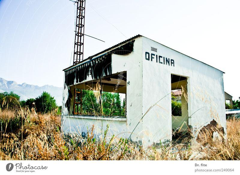 OFICINA Natur Tier Pflanze Gras Altea Spanien Europa Industrieanlage Fabrik dreckig kaputt trashig Verfall verfallen Büro Eingangstor Farbfoto Außenaufnahme