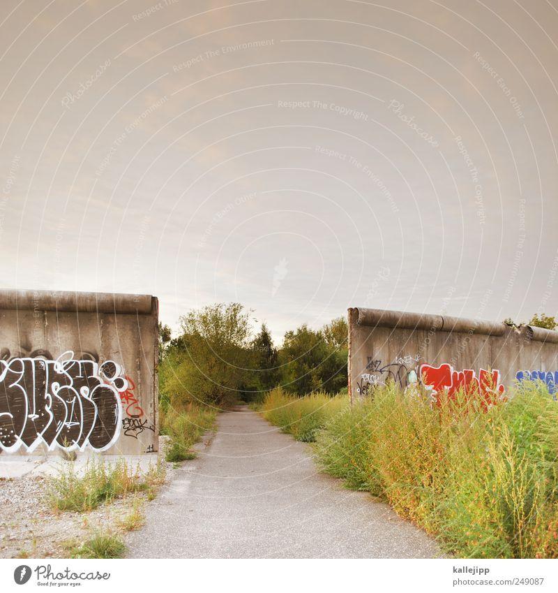 maueröffnung Himmel Natur Pflanze Sommer Tier Wiese Wand Umwelt Landschaft Graffiti Wege & Pfade Mauer Feld Wachstum Denkmal Grenze