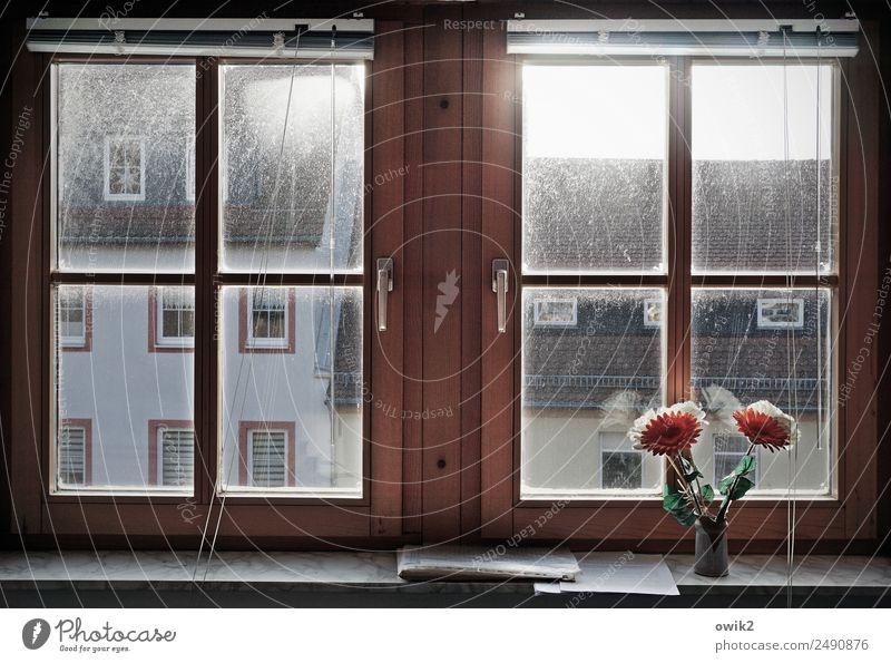 Eingeschränkte Aussicht Kleinstadt Haus Gebäude Mauer Wand Fassade Fenster Dach Fensterrahmen Kunstblume Blumenvase Jalousie Holz Glas Metall Kunststoff