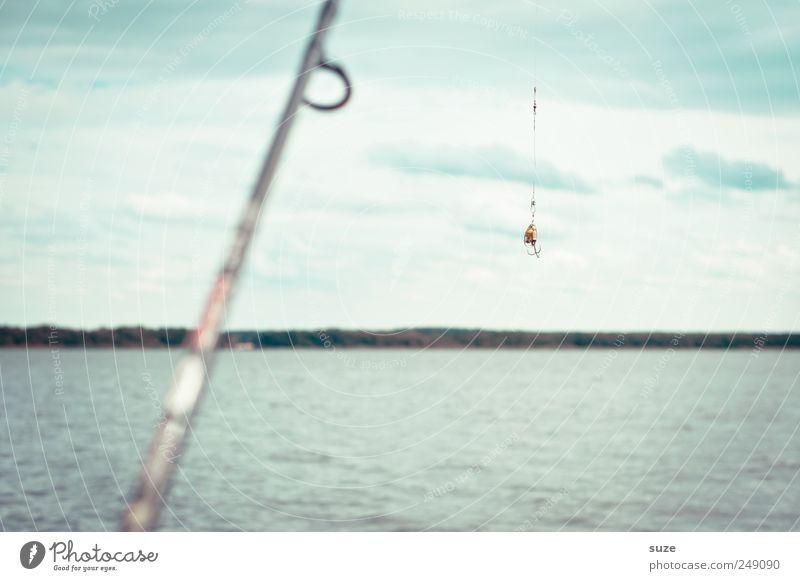 Angel Freizeit & Hobby Angeln Ferien & Urlaub & Reisen Umwelt Natur Luft Wasser Horizont Seeufer Konzentration Angler Angelrute Schwimmer (Angeln) Angelköder