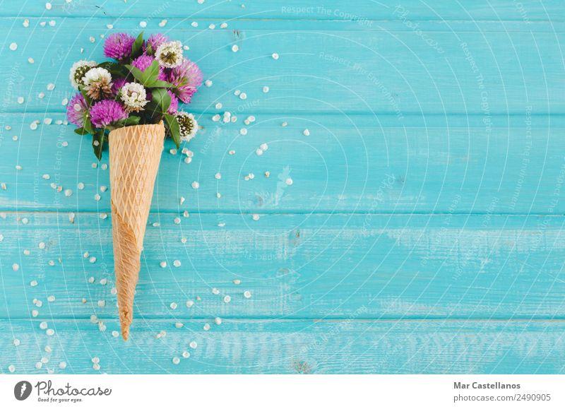 Blumenstrauß aus Kleeblumen in Kornett auf blauem Holzgrund Speiseeis schön Sommer Garten Kunst Natur Pflanze Frühling Gras Blatt Blüte Dekoration & Verzierung