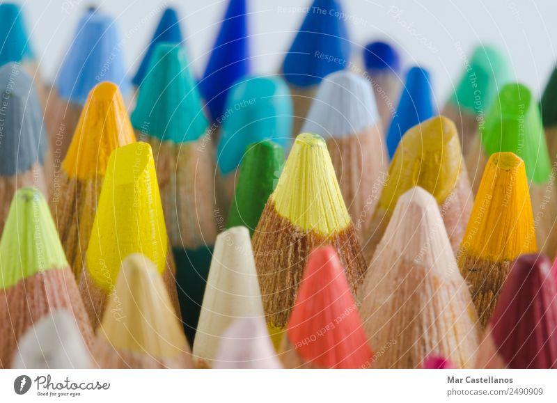 Nahaufnahme von Farbstiften Design Schule Schulkind Studium Arbeit & Erwerbstätigkeit Büro Kunst Maler Kunstwerk Schreibstift zeichnen schreiben einfach blau