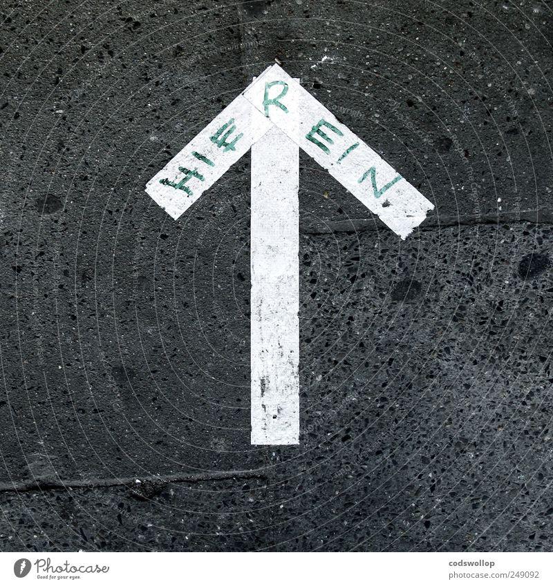 wo rein? weiß schwarz Graffiti Schilder & Markierungen Schriftzeichen außergewöhnlich Kommunizieren Hinweisschild Ziel Zeichen Pfeil entdecken Typographie