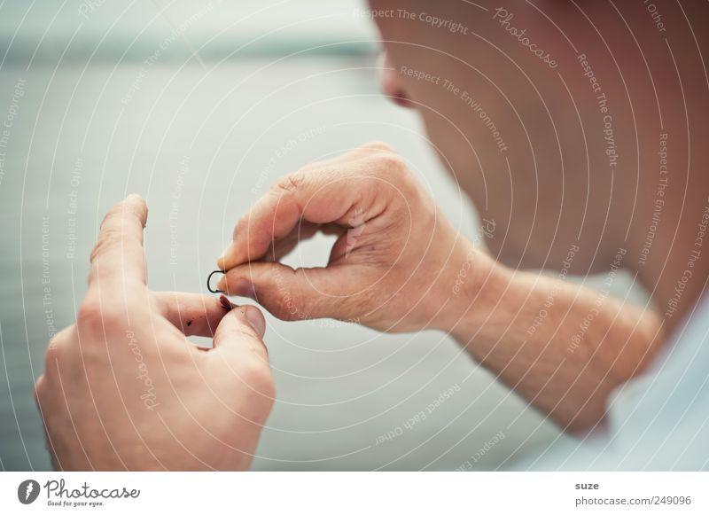 Fummler Freizeit & Hobby Angeln Mensch maskulin Mann Erwachsene Hand Finger 1 30-45 Jahre Wurm Ekel Angelköder Regenwurm auffädeln befestigen Farbfoto