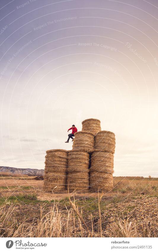 Mensch Himmel Natur Mann Sommer Sonne Landschaft Freude Erwachsene gelb natürlich Wiese Gras Glück Spielen springen