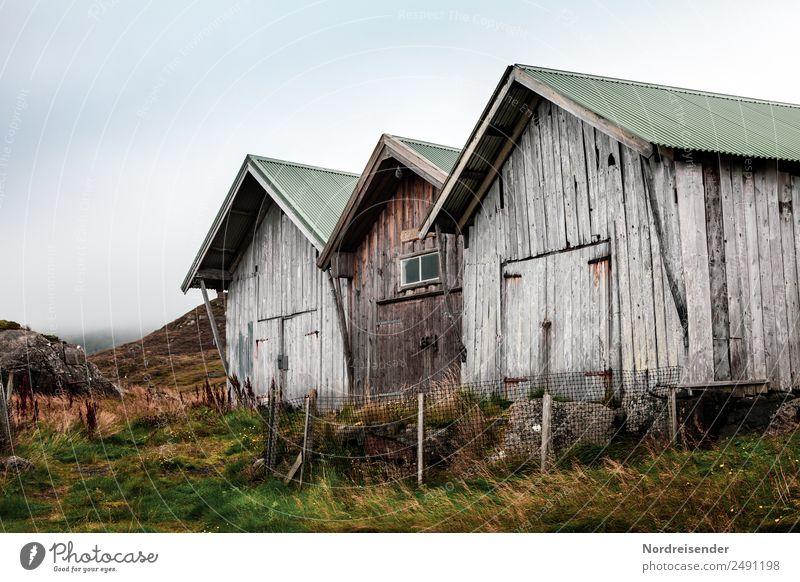 Alte Hütten im Regen Ausflug wandern Natur Landschaft Urelemente Sommer Herbst Klima Wetter schlechtes Wetter Gras Wiese Berge u. Gebirge Küste Haus Bauwerk