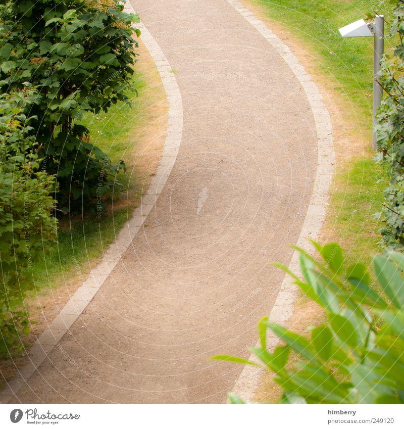 der weg ist das ziel Umwelt Natur Landschaft Pflanze Erde Sommer Baum Sträucher Garten Park Stadtrand Verkehr Verkehrswege Fußgänger Wege & Pfade Bewegung