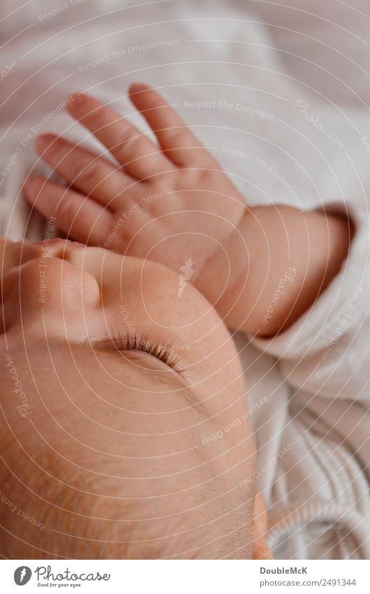Baby schläft Mensch Kopf Hand Finger Wimpern 1 0-12 Monate liegen schlafen Gesundheit unten orange rosa weiß ruhig Müdigkeit Erholung Pause unschuldig Vertrauen